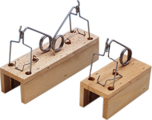 Rotanpyydys - puinen
