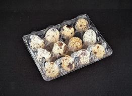 Kenno 12 viiriäisen munalle - läpinäkyvä 2